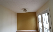 Painting Accent Wall Metallic Gold